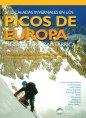 Guía Picos. Invernal